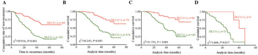 DLC1-negative patients are more likely to exhibit GC recurrence and shorter survival rates. Kaplan-Meier analysis was performed in (A) patients with stage IB-III GC for time to recurrence and in (B) patients with stage IB-IV GC for OS. Stratified analysis was also performed to evaluate the effect of DLC1 on OS in patients who (C) received radical resection (stage IB-III) and (D) underwent palliative surgery (stage IV). DLC1, deleted in liver cancer-1; GC, gastric cancer; OS, overall survival rate.