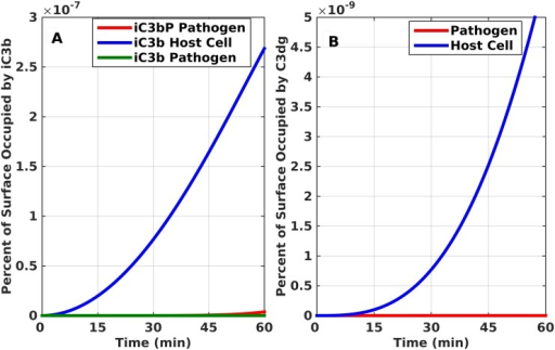 Time profile production for cleavage products of C3b. iC3b and C3dg.(A) iC3b. (B) C3dg. Both proteins take significantly less than 1 percent of pathogen and host cell surfaces.