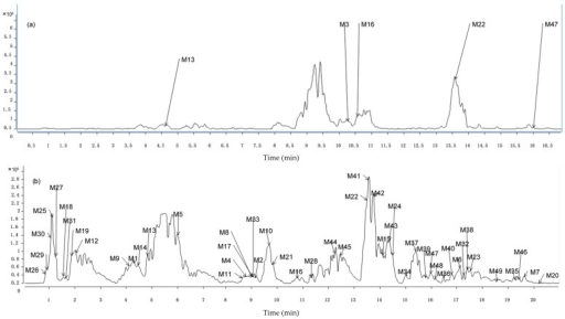 Base peak chromatograms (BPCs) with neutral loss scanning of 176 and 80 Da in negative mode to find constituents existing in (a) Rat plasma samples; (b) Rat urine samples.