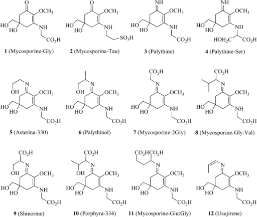 Molecular structures of some common mycosporine-like amino acids in marine organisms.