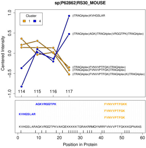 Ribosomal Proteins. Upper part: Quantitation profiles of the unique peptides assigned to the ribosomal protein RS30 detected in the first experiment. Labels are representing the samples: 114 - NZO_SD; 115 - SJL_HF; 116 - SJL_SD and 117 - NZO_HF. Colors orange and blue correspond to clusters 1 and 4 the peptides were identified in. Lower part: Protein sequence with positions of mapped peptides. Vertical bars displayed on the x-axis indicate predicted trypsin cleavage sites. The non-tryptic peptide was found with X!Tandem option 'refine unanticipated cleavages'.
