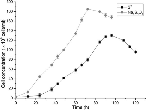 The growth curve of Acidithiobacillus thiooxidans A01 in S0 medium and Na2S2O3 medium. Data are average of three growth experiments.