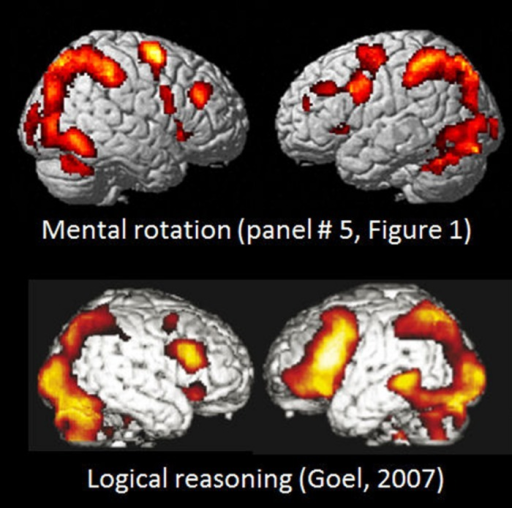Comparison of BOLD-fMRI activation patterns for Bergen Mental rotation task, and a logical deduction task (from Goel, 2007, Figure 1A). Reprinted with permission from the Publisher.