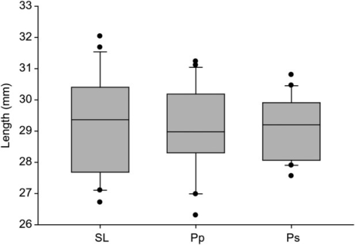 Relationship between nectar spur length of P. ciliaris (SL) and the proboscis lengths of P. palamedes (Pp) and P. sennae (Ps). The horizontal line is the median and the boxes and error bars represent the 10th, 25th, 75th and 90th percentiles. Black dots are outliers. There were no significant differences (P > 0.05).