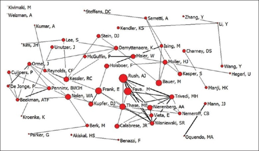 The structure map of the collaboration network among authors on depression research.
