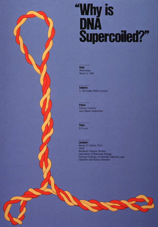 <p>Gray poster with black lettering and accents announcing lecture by Martin F. Gellert, Ph.D., Mar. 1986.  Also lists date, location, time, and Gellert's affiliation.  Dominant image on poster is orange and yellow braid, roughly in the shape of an &quot;L&quot; with an open loop at the top.</p>