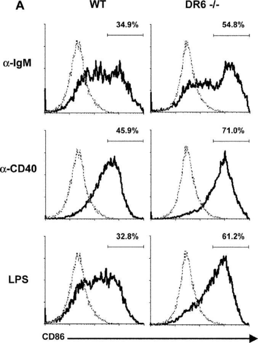 Enhanced Expression Of Cd86 And Apc Function By Activat