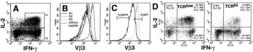 TCR downmodulation and cytokine production. T cell clone 3C6 was cultured with P13.9 + PCC88-104 (10 μM) in the presence of  monensin. After 5 h of incubation, surface TCR Vβ3, as well as intracellular IFN-γ and IL-2, were analyzed. (A) IFN-γ and IL-2 production by 3C6.  R1 = cells producing both IFN-γ and IL-2; R2 = cells producing IFN-γ alone; R3 = cells producing neither IFN-γ nor IL-2. (B) TCR expression of  each cell subpopulation after incubation with 10 μM PCC88-104 + P13.9. Gates R1, R2, and R3 are as in A. The histogram for cells in R2 largely  overlaps that for cells in R3. (C) Ungated TCR expression of 3C6 incubated with either with 10 μM PCC88-104 (solid line) or without peptide (dotted  line) + P13.9. The gates set to analyze cytokine expression by the cells with the 15% lowest (TCRlow) and 15% highest (TCRhi) receptor levels after incubation are indicated. (D) IFN-γ and IL-2 production profiles of TCRlow and TCRhi populations as detailed in C. The percentage of total cells and the  mean intensity of cytokine staining are shown for cells in the respective quadrants of the two-parameter histograms.