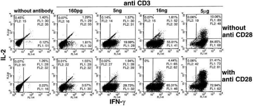 Effect of CD28 costimulation on response threshold, the number of responding cells, and the response per cell for IL-2 and IFN-γ induced  by anti-CD3 antibody. A.E7 cells were precultured without (top) or with (bottom) anti-CD28 antibody and then added for 5 h to the wells of plates precoated with the indicated concentration of anti-CD3 antibody. The cells were then stained for intracellular IL-2 and IFN-γ.