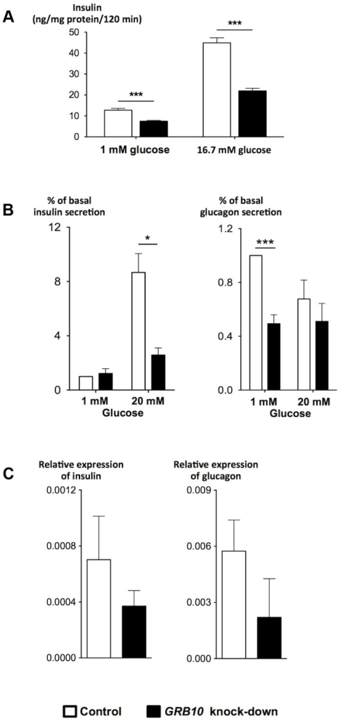 Effects of disrupted GRB10 through knock-down on islet function.(A) Disrupted GRB10 in INS-1 rat β-cells markedly reduced glucose-stimulated insulin secretion. (B) GRB10 knock-down showed reduced glucose-stimulated insulin secretion at 20 mM glucose and glucagon secretion at 1 mM glucose in human pancreatic islets (Ninsulin = 7, Nglucagon = 6 donors of human pancreatic islets; 3–6 measurements in each experiment for each donor). (C) GRB10 knock-down resulted in a reduction of insulin and glucagon mRNA expression (N = 3 donors of human pancreatic islets; 3 measurements in each experiment for each donor). * p<0.05; ** p<0.01, *** p<0.001. Error bars denote SEM.