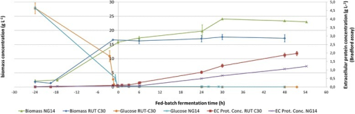 RUT C30 and NG 14 bioreactor culture profiles. Growth curves (dry biomass concentration g.L-1) and protein production levels (extracellular protein concentration g.L-1 (EC Prot. Conc.), as assayed by Bradford method (see Results), are displayed for NG 14 and RUT C30 T. reesei strains. Time 0 h marks the start of lactose feeding. Negative values represent the 24 h of batch culture and positive values the first 48 h of fed-batch culture with lactose. Each curve represents the average measure of two independent cultures; error bars show average standard deviation to give an estimate of replicates' quality (excluding technical replicates). One NG 14 replicate is lacking after 24 h lactose induction, so dispersion data is not available. Bradford method allows accurate assessment of production start and comparison between strains but underestimates actual values and is therefore not appropriate for carbon balancing (see Results for detailed explanations).