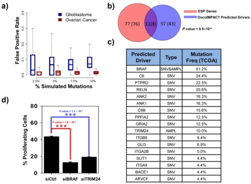 Validation of sample-specific driver gene predictions. (a) Box plots depicting the distribution across samples of FPR for driver gene predictions in OncoIMPACT (average of 20 simulations). Decoy mutations were introduced in random genes as proxy for non-drivers in this assessment. (b) Overlap between predicted unique cell line-specific drivers and shRNA validated genes (using at least 2 shRNAs) ESP in 24 ovarian cancer cell lines. Number in parenthesis represent the number of unique genes. The P-value is computed using hypergeometric test. (c) Frequency in TCGA samples and mutation type for driver gene predictions from a melanoma sample. (d) Cell proliferation assay in a patient-derived melanoma cell line treated with control siRNA or siRNA targeting BRAF and TRIM24. Error bars represent SEM of three independent repeats. Statistical significance was assessed by using student's t-test.