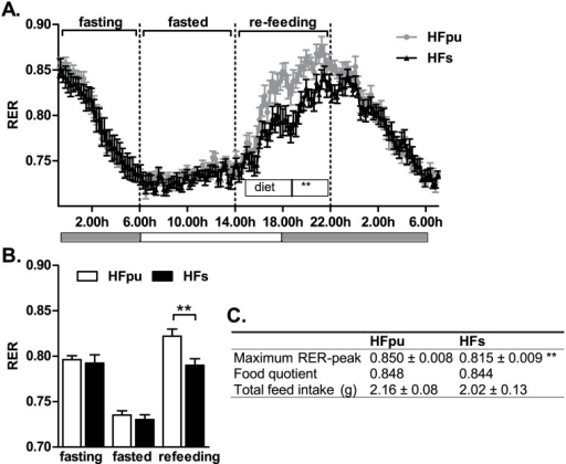 RER during the fasting and re-feeding challenge after 25 weeks of HF feeding.HFpu and HFs mice were fasted and regained ad-libitum access to their feed at 14.00h, while RER was monitored continuously (A, the grey bars below the figure indicate the dark phase). RER values of individual mice were averaged when mice were fasting (from 23.00h to 6.00h), when mice were in a fasted state (from 6.00h to 14.00h) and during re-feeding (from 14.00h to 22.00h) (B). The table (C) summarises the maximal RER-value during re-feeding based on three consecutive measures, the food quotients of the diets, and the feed intake during the 8 hours of re-feeding. ** P< 0.01 HFs mice vs. HFpu mice.