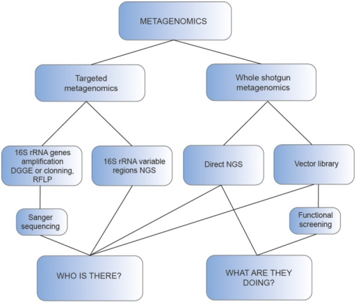Schematic representation of the main approaches used for metagenomic analysis of thermophiles.