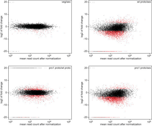 MA-plots for gene expressiondata from different comparisons. Log2 of fold ratios (M) were plotted against the average read counts (A) for the respective locus tag. The ratios were from the LOX analysis, the plots from the classic analysis look similar (data not shown). The log2 of ratios in which the denominator was zero were set to 20, and the log2 of ratios in which the numerator was zero were set to −20.