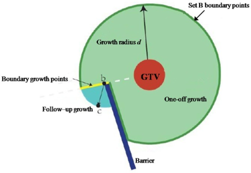 Schematic diagram of growth iterations.