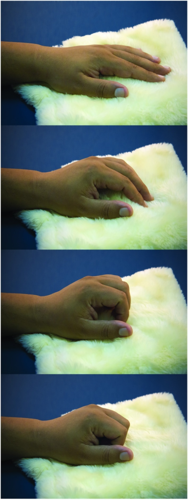 Task. The sequential photographs illustrate the paced fingers flexion over the soft cloth, resembling a caress-like movement.