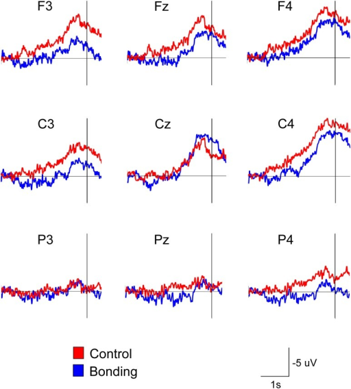 "Attenuation of the readiness potential by previous exposure to bonding pictures. Grand averages for the nine electrodes in the ""bonding"" (blue) and ""control"" (red) conditions are depicted. Vertical lines represent movement onset."