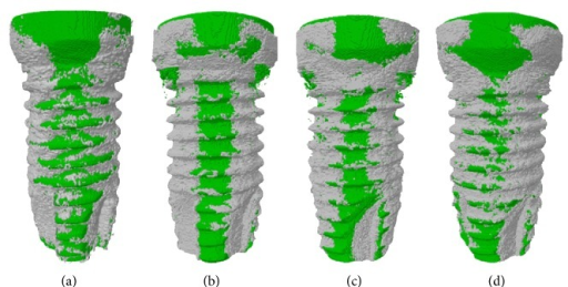 Micro-CT 3D images. (a) Control implant at week 4; (b) nano-CaP implant at week 4; (c) control implant at week 12; (d) nano-CaP implant at week 12. Green color represents implant surface and grey color represents bone.
