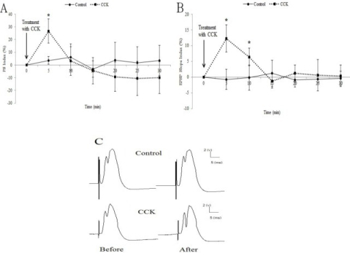 The effect of cholecystokinin sulfated octapeptide on field excitatory postsynaptic potential in dentate gyrus of the hippocampus at A: the population spike amplitude, and B: field excitatory postsynaptic potential slope. C: single traces recorded from responses before and 5 min after the treatment. (*p<0.05 with respect to field excitatory postsynaptic potential before the treatment in cholecystokinin group. n=6 for each experimental group).