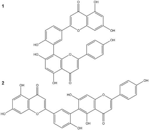 : compounds isolated from Selaginella sellowii:amentoflavone (1) and robustaflavone (2).