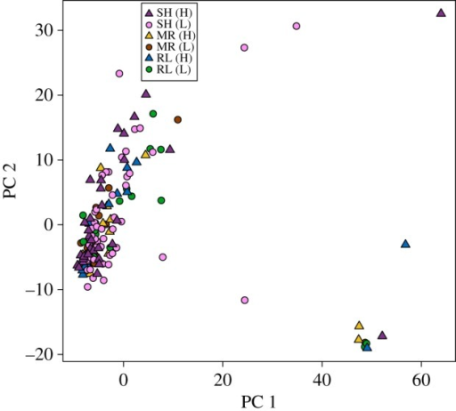 Genetic variation among individual mountain chickadees, as illustrated by the first two principal components from a PCA on the genotype covariance matrix. Individuals from different sampling sites are represented by different colours; high and low elevation sites are labelled in the legend with H and L and plotted as triangles and circles, respectively. MR, Mount Rose; RL, Red Lake; SH, Sagehen.
