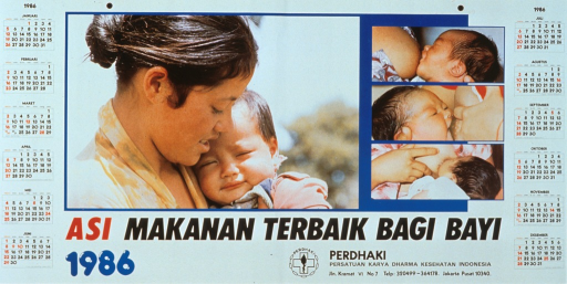 <p>Predominantly white poster with multicolor lettering.  Visual images are color photo reproductions featuring a mother and baby.  One photo shows the mother holding the child; the other three show the baby nursing at the mother's breast.  Title below photos.  Publisher information below title.  1986 calendar surrounds the photos.</p>