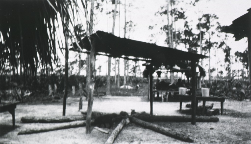 <p>View of a Seminole Indian camp.</p>