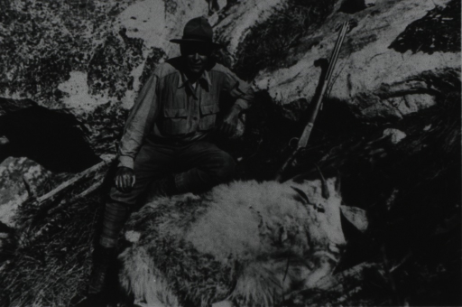 <p>PHS officer posed with mountain goat and rifle in the rugged terrain of the Bitterroot Valley, Montana. More than a thousand ticks were removed from the goat.</p>