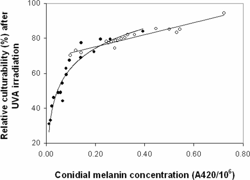 Relative culturability of A. niger strains after 4 h exposure to UVA irradiation plotted against conidial melanin concentration.Regression equations: linear for AS strains (open circles) y = 34.383x+68.414, R2 = 0.9166, P<0.001), and logarithmic curve for ES strains (solid circles) y = 16.334Ln(x)+100.67 R2 = 0.9187: p<0.001).