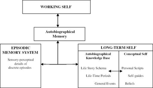 autobiographical memory Autobiographical memory, sometimes termed personal memory, is a combination of episodes recollected from an individual's life when considered collectively, autobiographical memories serve as the basis for a person's life story.