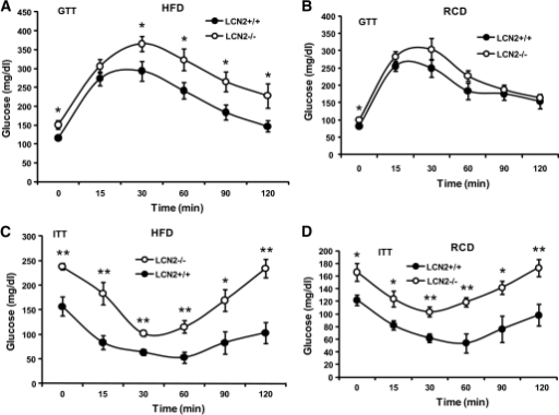 Assessment of insulin sensitivity. GTTs (A) and ITTs (C) conducted in LCN2−/− mice on an HFD (n = 10–12, age 14–15 weeks). GTTs (B) and ITTs (D) conducted in LCN2−/− mice on an RCD (n = 10–12, age 28–29 weeks). Data are represented as means ± SE. Experiments were repeated on two independent sets of mice, yielding similar results. *P < 0.05; **P < 0.01.