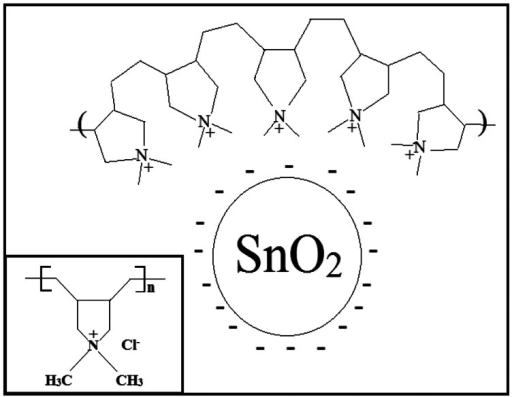 The electrostatic interaction between SnO2 and PDDAC. The inset is the chemical structure of PDDAC.
