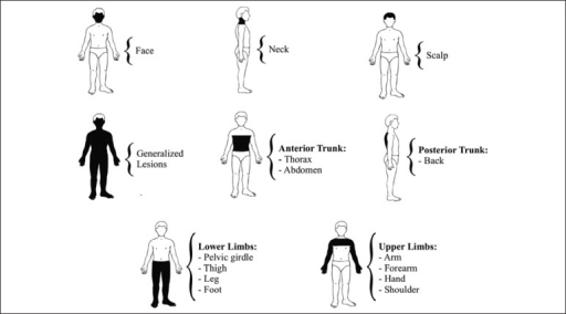 Distribution of lesions according to anatomic location