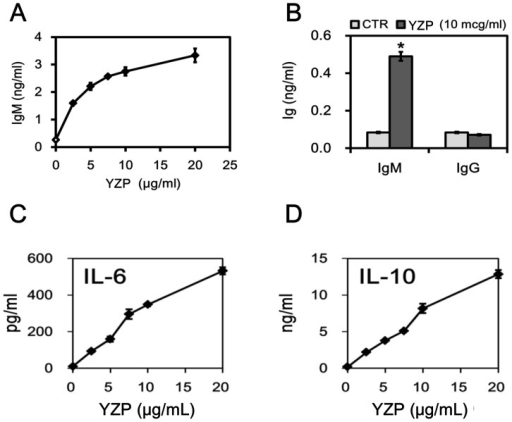 YZP induces IL-6 and IL-10 production in mice B cells.A. MACS-purified CD19+ B cells were treated with the indicated dosages of YZP for 72 h, and the culture supernatant was then collected for IgM measurements. B. MACS-purified CD19+ B cells were treated with YZP (10 μg/mL) for 72 h, and subsequently the culture supernatant was collected for IgM and IgG measurements. C. and D. MACS-purified CD19+ B cells were treated with the indicated dosages of YZP for 72 h, and subsequently the culture supernatant was collected for cytokine measurements.