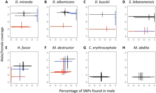 "Detecting neo-sex chromosomes.A,B,C: Male/female coverage versus percentage of SNPs found in males (SNPs in the male sample/total number of SNPs) for scaffolds from the autosomes (black), fully differentiated (red), and newly evolved (blue) X chromosomes of Drosophila miranda (A), Drosophila albomicans (B), and Drosophila busckii (C). D: The neo-X (in blue) of Scaptodrosophila lebanonensis (D) is fully degenerated; it shows a 2-fold reduction in male versus female expression but no excess of male SNPs, similar to the ancestral X. E,F: The Muller elements of Holcocephala fusca (E) and Mayetiola destructor (F) that have intermediate levels of male to female coverage, in blue, have SNP patterns that are inconsistent with newly derived sex-chromosomes (no excess of male SNPs). G,H: No evidence of differentiated sex chromosomes using coverage or SNPs in Calliphora erythrocephala (G) and Megaselia abdita (H). The lines intersect at the median, and extend to the 10% and 90% percentiles. Data to generate this graph are to be found in file ""S1 Data"" and ""S2 Data."""