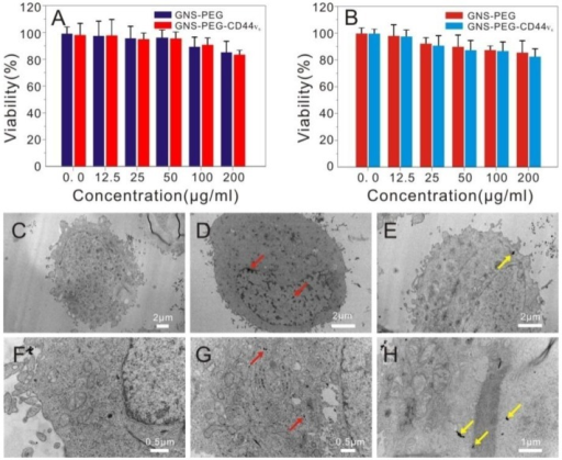 Viability of GCSCs (CD44+sphere cells) (A) and GES-1 cells (B) treated with GNS-PEG or CD44-targetable GNS-PEG-CD44v6 measured by MTT assay; TEM images of GCSCs treated with GNS-PEG (C, F) and GNS-PEG-CD44v6 (D, G); The arrow indicates that the nannoparticles are mainly gathered in the cytoplasm and nucleus cleft of CD44+sphere cells (D, G) and GC cells (E, H).