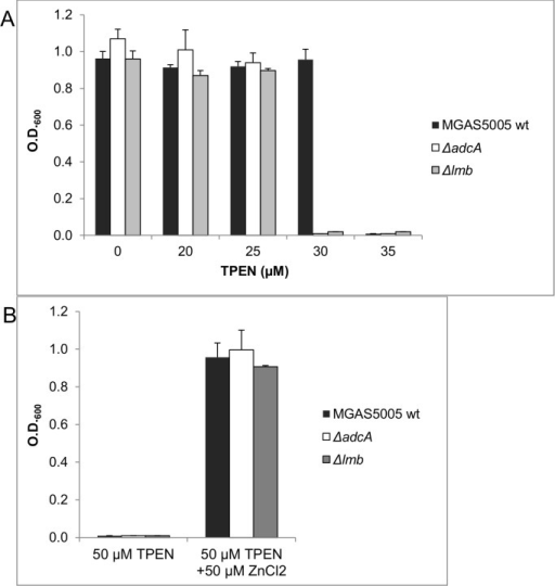 Inhibition of growth by TPEN is rescued by the addition of Zn2+ ions.(A) Susceptibility to Zn2+ starvation of wild type, ΔadcA and Δlmb  mutants grown in THY medium containing increasing concentrations of the chelating agent TPEN. (B) Inhibition of growth by 50 μM TPEN is rescued by the addition of either 50 μM Zn2+ in wild type as well as in ΔadcA and Δlmb  mutants. Error bars represent the standard deviation.