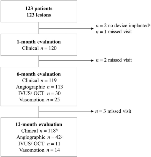Patient flow chart. IVUS, intravascular ultrasound; OCT, optical coherence tomography. aTwo patients who did not receive an implant were used for calculation of device and procedural success only. bThirty-four visits were conducted by phone. cForty-five angiographic assessments of which two were excluded as they did not have matched projections recorded, one did not have a 6-month but only 12-month angiography.