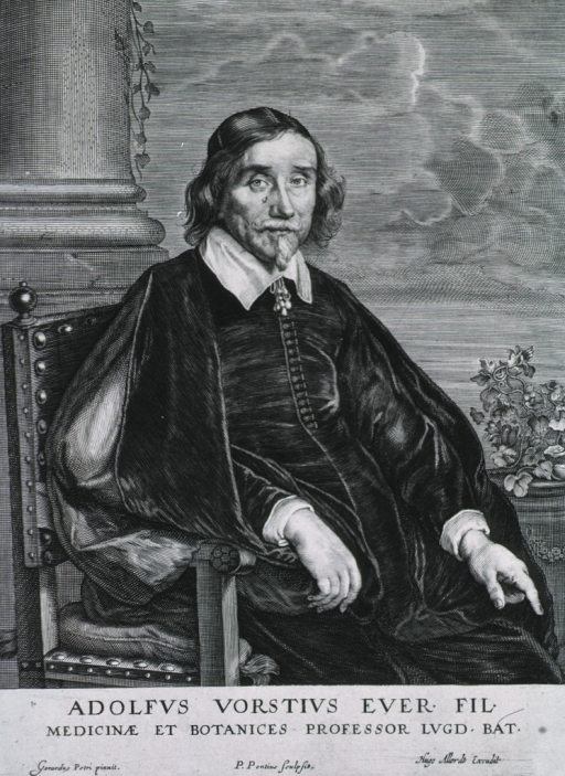 <p>Seated, right pose, showing both hands.</p>