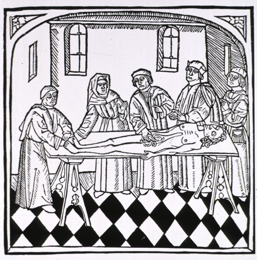 <p>Dissection scene in room, first in English printed work.</p>