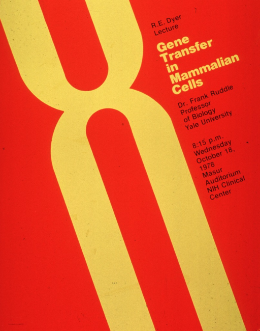 <p>Orange poster with yellow and black lettering announcing lecture by Dr. Frank Ruddle, Oct. 1978.  Also lists time, date, and location.  Central image on poster is yellow geometric design suggestive of two &quot;u&quot;s joined at the curve, as if one were upright and the other upside down.</p>