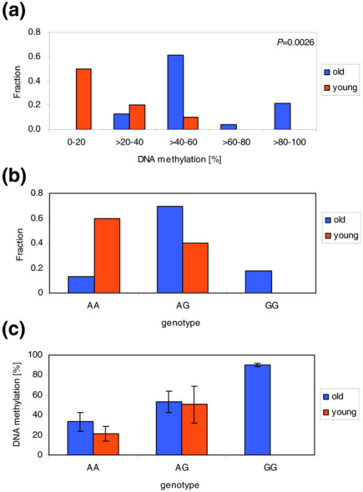 Correlation of DNA methylation with age in amplicon 262. (a) Methylation of amplicon 262 in old and young individuals analyzed without considering genotypes. An age-related highly significant increase in methylation appears to be detected. (b) Distribution of A and G genotypes among old and young individuals in our study. (c) Comparison of DNA methylation in old and young individuals with the same genotypes. This panel shows a re-analysis of the data plotted in (a); error bar represent the standard deviations of the data. This representation of the data clearly indicates that there is no age-related gain of methylation in this amplicon.