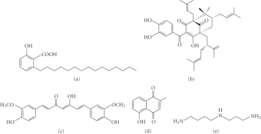 garcinia indica chemical composition
