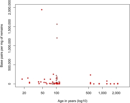 "Amounts of endogenous mtDNA sequences (bp) determined per milligram (mg) of tissue as a function of age.Note that since the Neandertal specimens were all ascertained for containing endogenous DNA they are excluded from this analysis. Nine samples known to have been ""roasted"" over fire and treated with ponal glue are indicated by crosses and four samples treated by the ""Leipzig cocktail"" are indicated by circles."