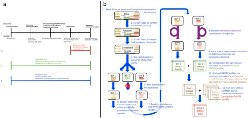 "(a) Error detection capabilities of Score, Reference-genome, and DRISEE methods.(1) Simplified procedural diagram of a typical sequencing protocol. Sample collection: First, the biological sample is collected, Extraction/Initial purification: Then the RNA/DNA undergoes extraction and initial purification procedures, Pre-sequencing amplification(s): Next, the extracted genetic material may undergo amplification (e.g. whole genome amplification – see main text) followed by additional purifications and/or other processing procedures, ""Sequencing"": Genetic material is placed in the sequencer itself, and is sequenced. Note that sequencing itself frequently involves additional rounds of amplification, Analyses of sequencing output: Sequencer outputs are analyzed. (2) Given a procedure such as A, the portion of the procedure over which score/Phred-based methods can detect error is indicated in red. (3) Given a procedure such as A, the portion of the procedure over which reference-genome-based methods can detect error is indicated in green. Note that reference-genome-based methods are only applicable to single genome data; they cannot consider metagenomic data. (4) Given a procedure such as A, the portion of the procedure over which DRISEE-based methods can detect error is indicated in blue. Note that DRISEE methods can be applied to metagenomic or genomic data, provided that certain requirements are met. See methods. 1: BMC Bioinformatics. 2008 Sep 19;9:386. 2: Nat Methods. 2010 May;7(5):335–6. Epub 2010 Apr 11. (b) DRISEE workflow The steps in a typical DRISEE workflow are depicted and briefly described (in figure captions). Please see Text S1 (Supplemental Methods, Typical DRISEE workflow) for a much more detailed description of each depicted step."