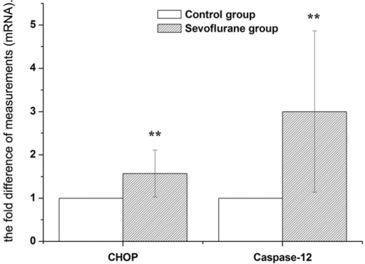 Expression of CHOP and Caspase-12 mRNA in hippocampus were analyzed by real-time RT-PCR.The real time reactions were performed in duplicates for both the target gene and GAPDH used as a housekeeping control. The relative expression was calculated using 2−ΔΔCt method. Data are presented as mean ± SD. **P<0.01, vs control group.