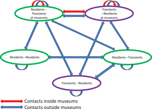 For healthy behavior interventions, resident and transient populations are further divided based on whether they visit one of four museums.The Residents – Transients at museums subpopulation represents residents who visit the museums and meet both residents and transients. Similarly, the Transients – Residents at museums subpopulation represents transients who visit the museums and meet both transients and residents. These two subpopulations are denoted as rtm and trm and they have contacts inside the museums (red) and outside the museums (blue). The other three subpopulations (rrnm, rtnm and trnm) represent subpopulations of individuals who do not visit museums.