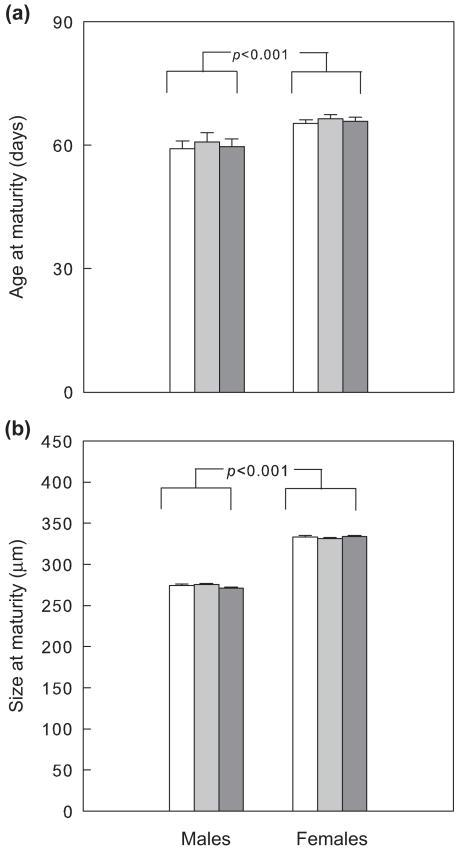 Influence of previous IGP risk during the larval stage (no: white, n = 36; low: light grey, n = 36); high: dark grey, n = 36) on age (a) and size (dorsal shield length) (b) at maturity of male and female P. persimilis (mean + SE). p-values refer to differences between males and females pooled over IGP risk levels (GLM).