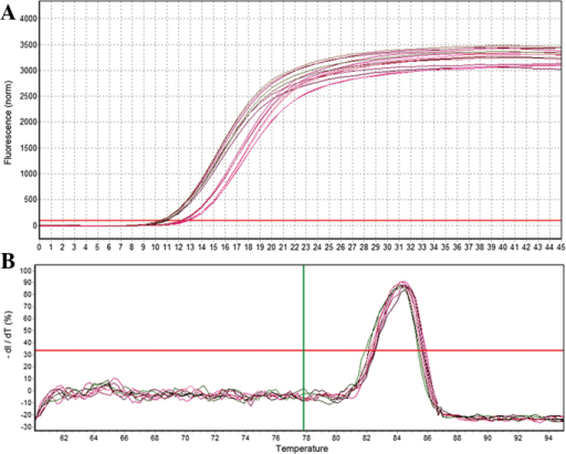 Quantification curve and melting curve for miR-26b. (A) Quantification curve for miR-26b. (B) Melting curve for miR-26b. miR, microRNA.